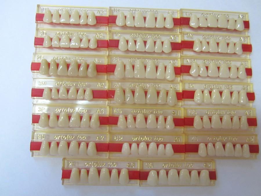 мех плотный спофадент зубы каталог с картинками этого хорватские власти